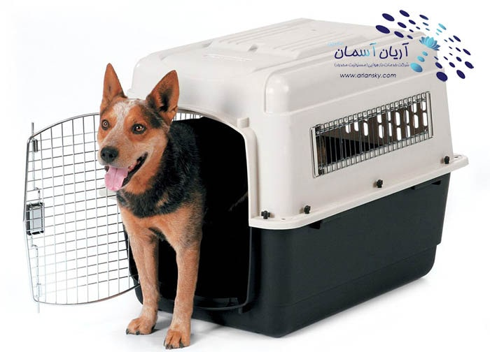 شرایط قفس (کنل) حیوان زنده در حمل هوایی